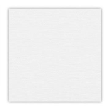106549 Cardstock Murmure blanc