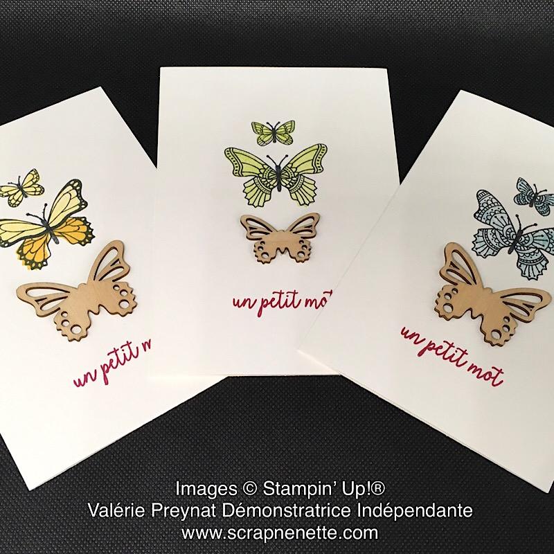 Carte Gala de Papillon 1