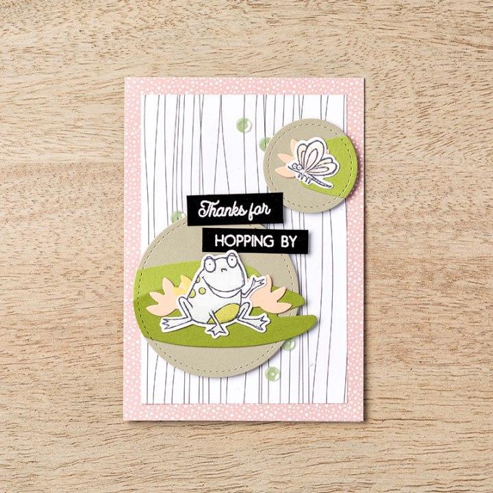 Grenouilles Carte 1