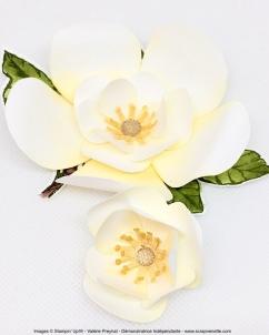 Magnolias papier 3D